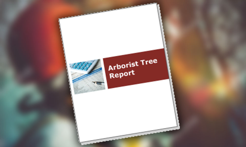 arborists report adelaide